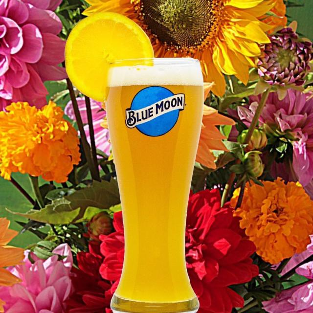 Today we are celebrating Mother's Day! Treat your mom to a FREE pint on us! (Mom must be 21+. 1 free pint per mom)🍻😉 • • • #happymothersday #momsrule #freebeer #bluemoonbeer #sundayfunday #brewery #denver #colorado #rinodistrict